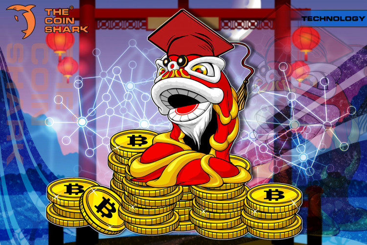 Study: 8% of Chinese Students Own Cryptocurrencies