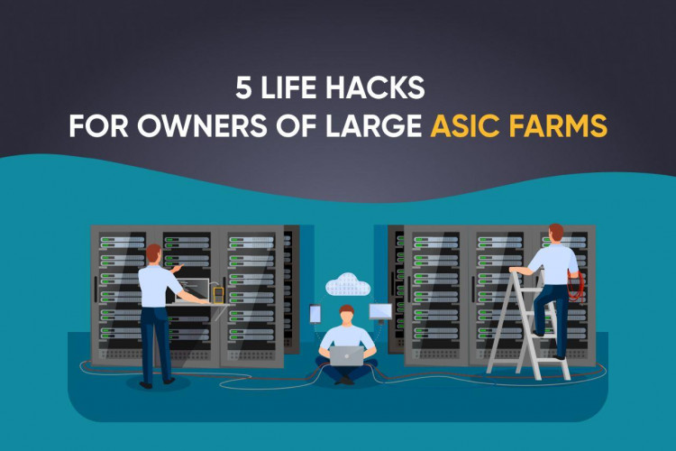 5 life hacks for owners of large ASIC farms