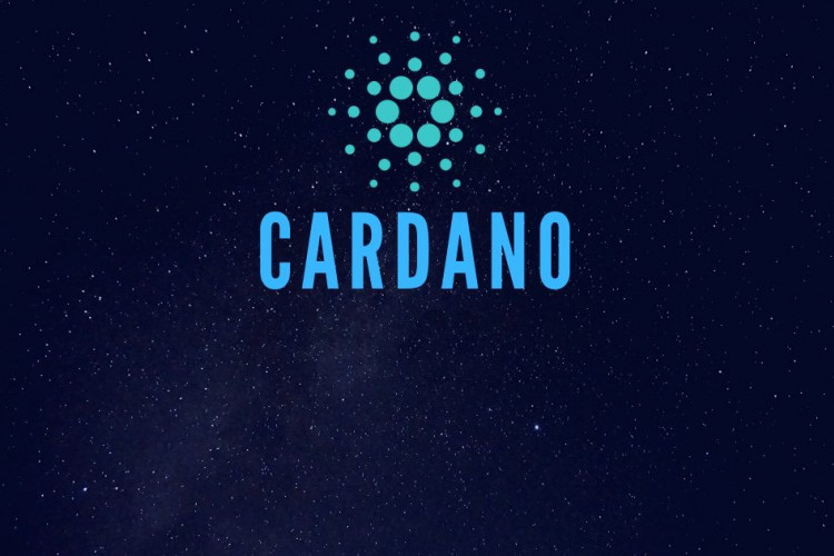 Crypto Startups Working With Cardano Products May Receive Additional Funding