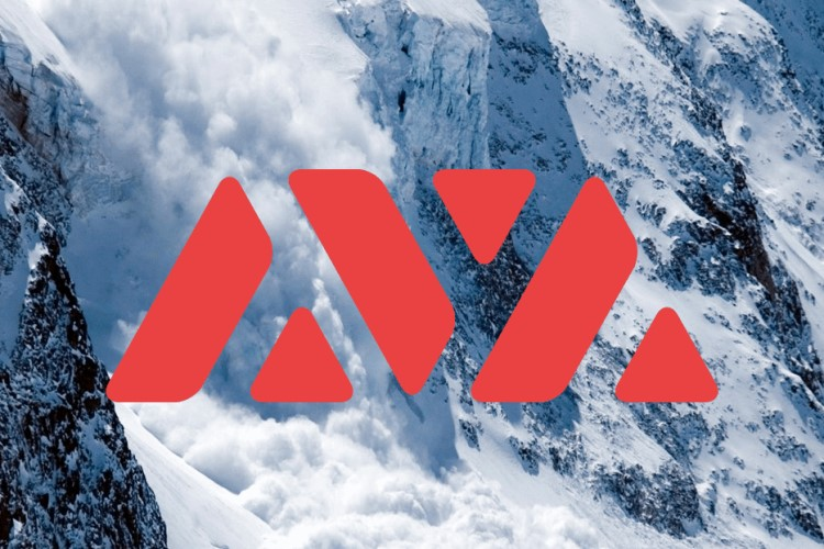 Why has the AVAX token increased 200% since the beginning of the month? -  CoinShark